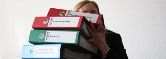 Leistungsbeschreibung für eine umfassende Organisationsuntersuchung